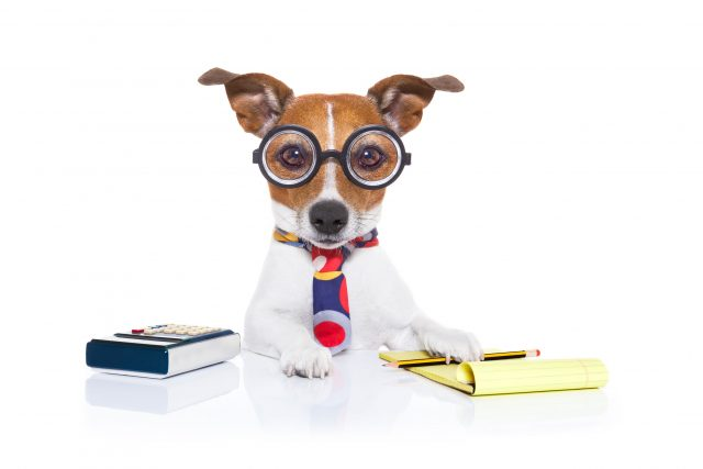 Bookkeeper and Accountant
